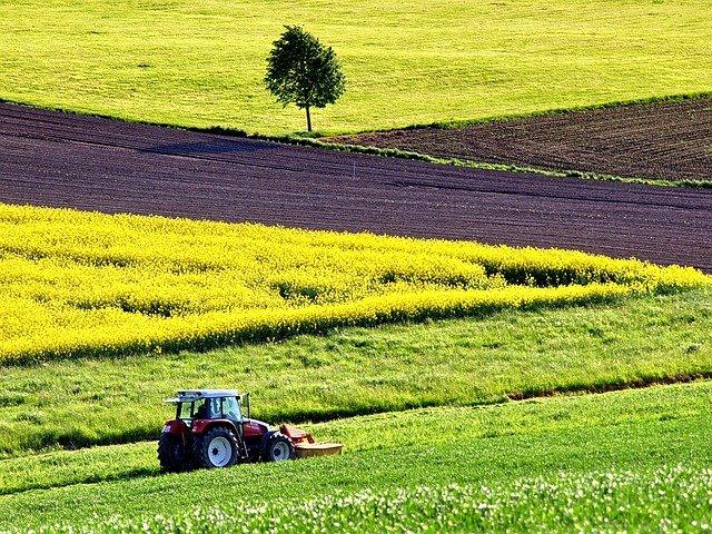 Közös Agrárpolitika Program lehet a járvány utáni válság helyreállítására a válasz?